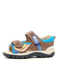 Naturino Leder-Sandalen in Braun/ Blau